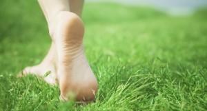 Feet-on-grass-650x350
