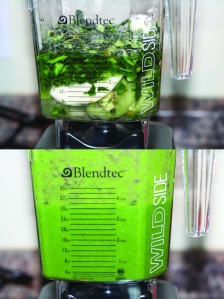 blendtec-green-smoothie-598x800